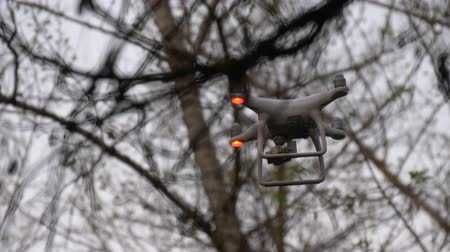 Flying drone with camera between branches. Uav drone copter flying with digital camera and flickering lights.