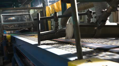 reciclado : Manufacture of tires. Tyre production machine conveyor. Rubber tape at a tire factory is cut into pieces before forming in a curing machine. Camera tilted to the left. Stock Footage