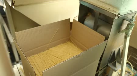 assemblea : Packing pasta at the factory. Line for packaging pasta in plastic bags. Worker packs spaghetti in cardboard boxes. Large cardboard boxes with spaghetti. Packing workshop at a pasta factory. Filmati Stock