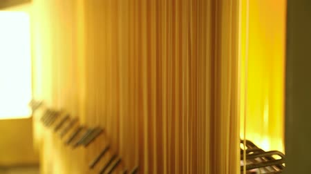 fragilidade : Spaghetti processing in a pasta Factory. Production of pasta on a modern production line. Macaroni factory and pasta production. Close up of raw spaghetti hung in a pasta factory, swinging, to dry Stock Footage