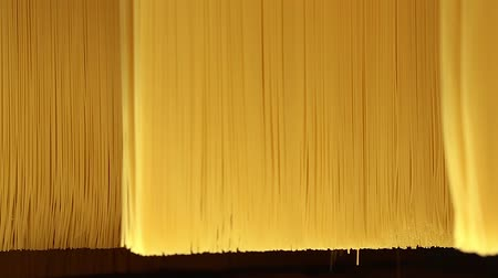 fragilidade : Background, texture of pasta and spaghetti close-up. Close up of raw spaghetti hung in a pasta factory, swinging, to dry. Golden color raw spaghetti pasta extruded in a pasta factory ready to be dried Stock Footage