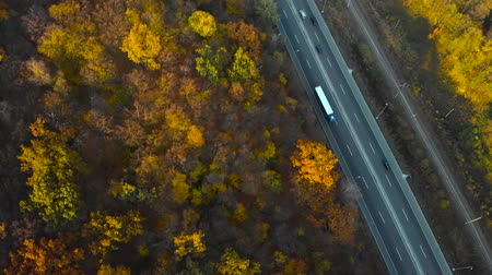 pista de corrida : Top down view of autumn road car. Aerial view country road in autumn forest. Forest and highway road drone view at autumn. Car road in forest top view aerial at sunset. Drone over road in a woodland.