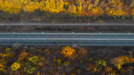 Aerial view of road in beautiful autumn forest at sunset. Colorful landscape with highway, cars, trees with red, yellow and orange leaves. Top view of roadway. Autumn colors. Fall woods. Scenery road.
