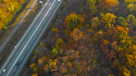 Top down aerial footage of a road during the autumn season. Drone flies over the road in a woodland. Beautiful landscape with rural road and trees with colorful leaves. Railway in the autumn forest.
