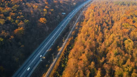 мостовая : Road in autumn forest at sunset, drone aerial view. Road trip perfect road winding its way through thick forest. Beautiful landscape with rural road and trees with colorful leaves. Railway in forest.