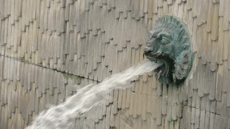 beest : SLOW MOTION: Fountain in the form of a lions head. Fountain with a sculpture of a lion from the mouth breaks out a stream of water. Lion Head Wall Water Fountain in London, England, United Kingdom Stockvideo