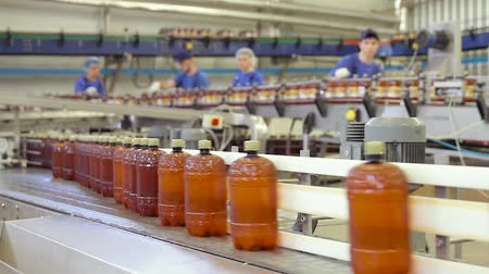 brew : Beer in brown plastic bottles on the conveyor. Shop for bottling beer in a brewery. Shop for bottling and packaging beer. Fresh beer in a plastic container moves on a conveyor belt close-up.
