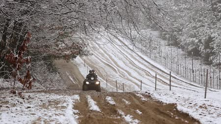border crossing : Border guards on ATV patrols state border. Border patrol on a quad bike on the border. Selective focus. Stock Footage