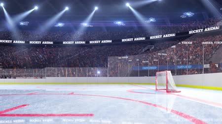hockey rink : Hockey court with people fan. Sport arena. Ready to start championship. 3d render. Moving lights