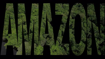 manaus : Amazon Rainforest text on aerial view of Anavilhanas Archipelago, Brazil Stock Footage