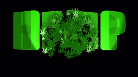 Video to promote medical cannabis and its sale: hemp, medical cannabis, 100% natural 무비클립
