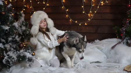 huskies : Frightened girl sitting under the tree and trying to keep the Huskies dog