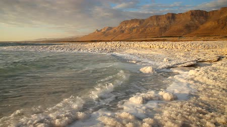 beach panorama : Dead Sea coastline