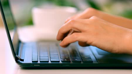 detay : Female hands typing on a laptop keyboard Stok Video