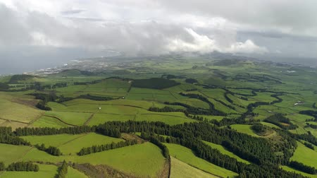sao miguel : Landscape with forest and green fields of San Miguel Island, Azores, Portugal. Aerial view. 4K, UHD Stock Footage