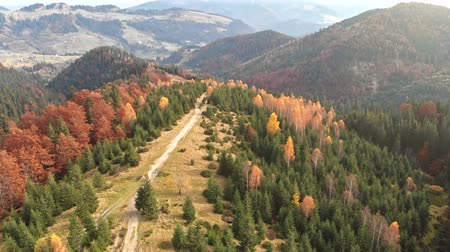 dumanlı : Aerial view of autumn mountains. Flying over red, orange and green trees. Autumn concept.