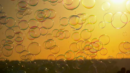 bańki mydlane : Soap bubbles flying in the golden sunset rays. 4K Wideo
