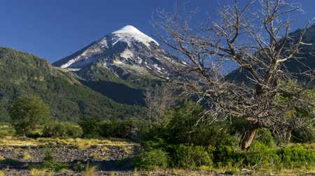 andy : Lanin volcano in Lanin National Park, Patagonia, Argentina near the Chilean border. 4K UHD
