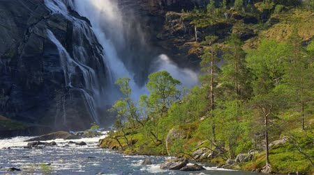 zuhatag : Water falling slowly in cascades from a rock in a waterfall in Norway surrounded by woods. UHD Stock mozgókép