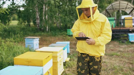 apiary : Steadicam shot of Beekeeper man with tablet computer checking beehives in apiary Stock Footage