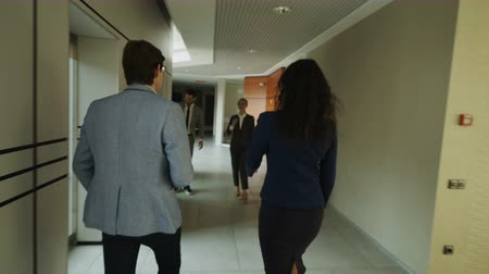 Войти : Tracking shot of talking businesswoman and businessman walking at hall and meeting colleagues and come in into elevator together in modern business center Стоковые видеозаписи