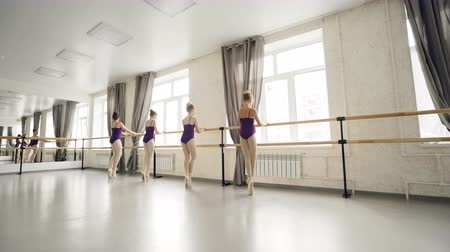 classical suit : Diligent children ballet dancers are doing exercises dancing on tiptoes holding ballet barre while their teacher is checking feet position and helping students. Stock Footage