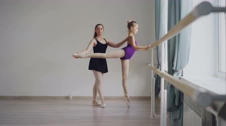 classical suit : Diligent little ballet student in bodysuit is having individual ballet lesson with professional teacher learning movements and positions raising leg backward.