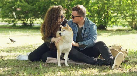 patting : Husband and wife happy couple are fussing their pet shiba inu puppy sitting on grass in park and talking. Conversation, animals and modern lifestyle concept.
