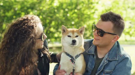 patting : Loving owners of beautiful dog shiba inu are kissing the animal and petting it on the head while resting in the park together. Love, pets and healthy lifestyle concept. Stock Footage