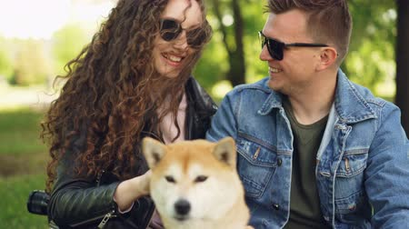 acariciando : Young people pretty girl and her boyfriend are patting beautiful dog, laughing and talking resting in the park sitting on grass. Focus shifts from people to animal. Stock Footage