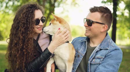 apaixonado : Proud dog owners pretty girl and handsome guy are playing with shiba inu dog, kissing it and scratching its fur relaxing in the park at weekend. People and animals concept. Stock Footage