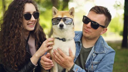 gondos : Cute couple handsome guy and his girlfriend are kissing pedigree dog, all wearing sunglasses, people are laughing and touching animal. Pets and owners concept. Stock mozgókép