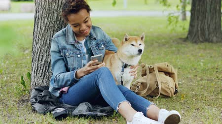 patting : Happy African American woman is using smartphone and caressing her cute pet dog resting in city park on windy summer day. Nature, animals and people concept. Stock Footage