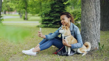послушный : Attractive African American girl is taking selfie with cute dog resting in city park cuddling and caressing beautiful animal. Modern technology, loving pets and nature concept. Стоковые видеозаписи