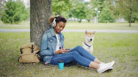 patting : Modern African American girl is listening to music with headphones and using smartphone relaxing in city park with pet dog, stroking and caressing the animal.