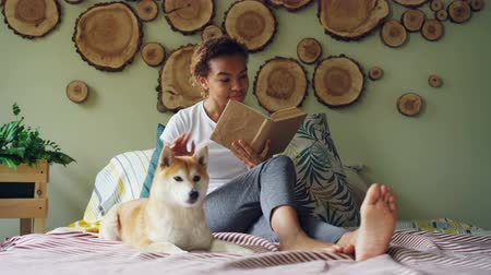 patting : Attractive mixed race girl is reading book and stroking her puppy sitting barefoot on bed in modern apartment. Loving animals, enjoying literature and houses concept.