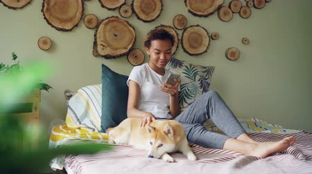 acariciando : Pretty young woman is using smartphone and caressing lovely puppy lying on bed near its owner in modern style bedroom at home. Technology, animals and people concept.