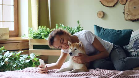 acariciando : Pretty girl proud dog owner is making video call and caressing her purebred dog lying on bed at home, young woman is talking and showing animal to interlocutor. Stock Footage