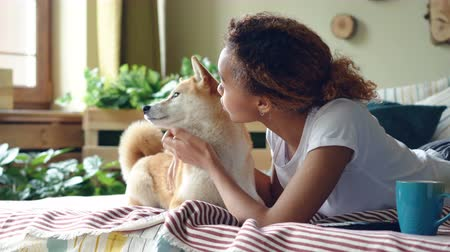 treating : Happy girl student is feeding her small dog and caressing it lying on bed at home, while animal is chewing, licking its mouth and nose and enjoying food and love.