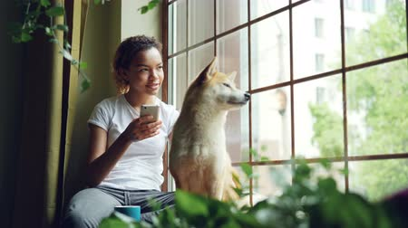 banquinho : Pretty young woman is sitting on window sill and using smartphone while her cute calm shiba inu dog is sitting near her enjoying view. Leisure and houses concept.