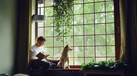 patting : Attractive African American girl student is reading book and stroking her purebred dog sitting on window ledge in modern apartment. Hobby, animals and interior concept. Stock Footage