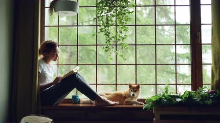 taburete : Charming female student African American girl is reading book sitting on windowsill near lovely pet dog lying beside her. Home, hobby and animals concept.
