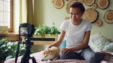 subscriber : Emotional girl successful blogger is recording video for her online vlog sitting on bed in modern apartment and stroking cute dog lying on bed. Blogging and animals concept. Stock Footage