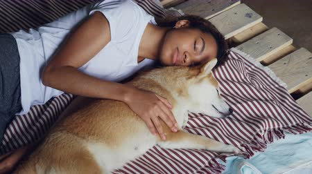 bağlılık : Beautiful African American teenager and adorable pet dog are sleeping together on wooden bed, girl is wearing comfortable pajamas and hugging animal.