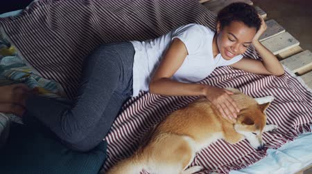 acariciando : Kind African American girl is stroking lovely pet dog lying on bed at home together, enjoying rest and tranquility. Modern wooden bed and bright linen is visible.