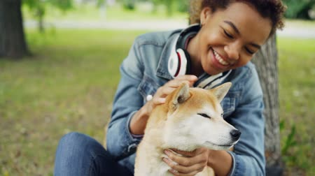 fur headphones : Slow motion of loving African American girl pet owner stroking its dog fussing fur on its neck and looking at animal with love and care. People and nature concept.