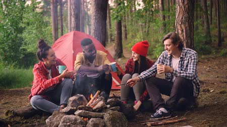 костра : Cinemagraph loop - multiethnic group of friends girls and guys are sitting in forest around fire with drinks clinking glasses and smiling, smoke is going up.