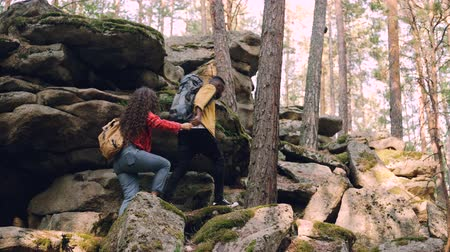 helpful : Young multiracial couple is hiking climbing up mountains, African American man is helping woman giving her hand and pulling her up, people are holding backpacks. Stock Footage