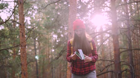 přežití : Happy tourist attractive young woman is travelling in forest then looking at map and looking around exploring wood. Adventurous people, happiness and sunlight concept.
