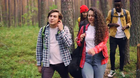 expédition : Smiling young people friends are walking in forest with backpacks, attractive girl is carrying guitar, men and women are talking enjoying nature and good company. Vidéos Libres De Droits